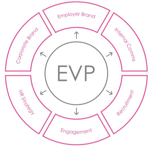 What makes a good Employee Value Proposition EVP, a talentsmoothie diagram